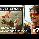 Кубик смерти: как достать самую опасную медузу (и выжить)