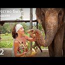 Слон: Искусство быть большим