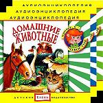 Аудиоэнциклопедия Чевостика